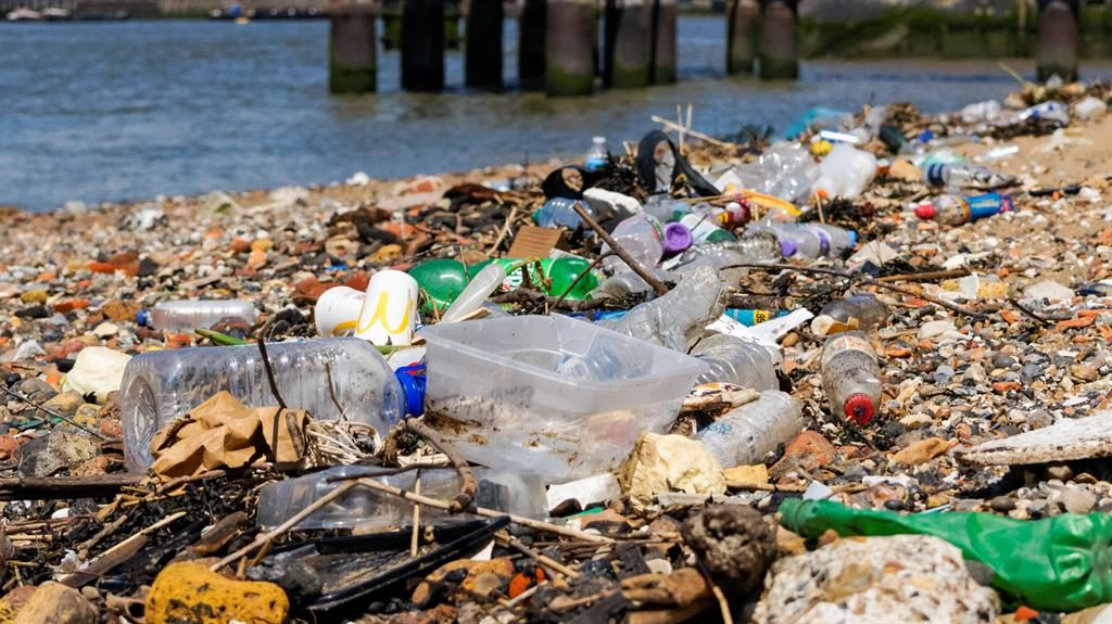Natural tragedy: Litter on our foreshores and riverbanks demonstrates the urgent need to find an alternative to plastic PICTURE: ALAMY