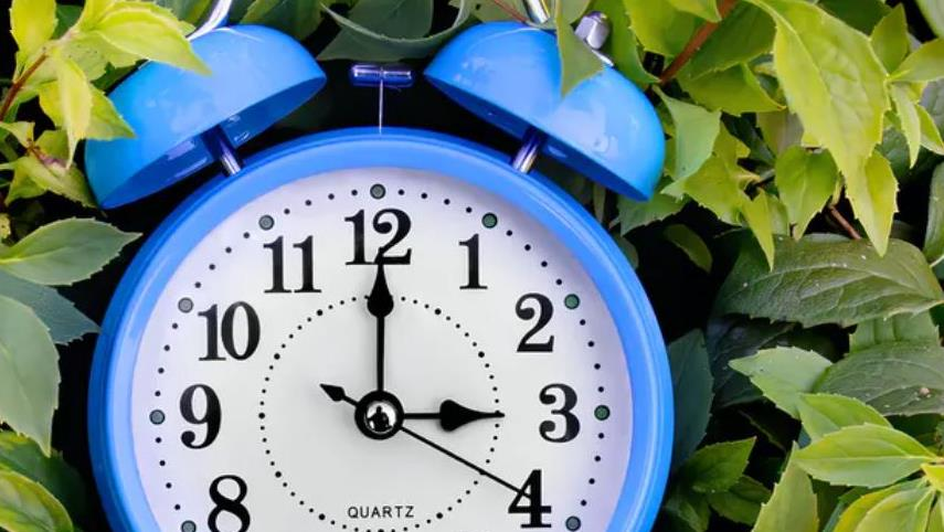 Disruption: Lockdown impacted our daily routines and lowered their carbon footprint PICTURE: SIPETA/SHUTTERSTOCK