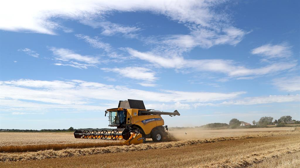 Brexit: Farming set for biggest policy shake-up in 50 years